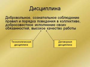 trudovaya-disciplina-2