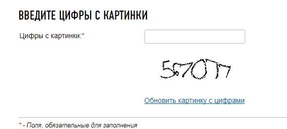 Скрин сайта ФНС с полем для ввода каптчи