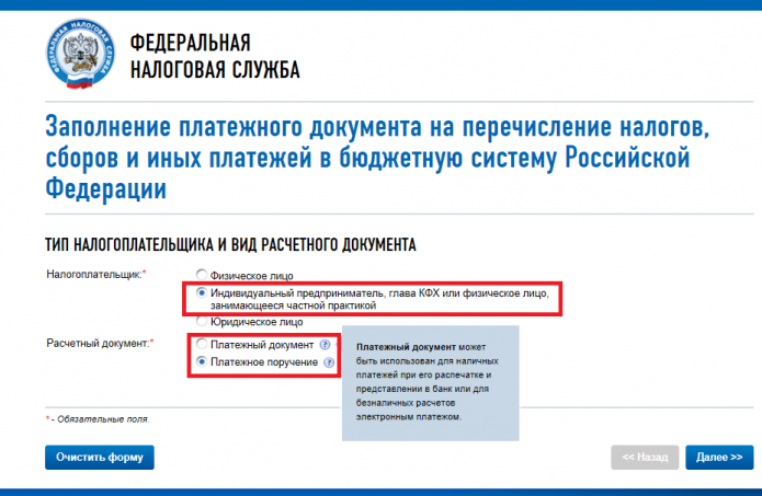 Скрин страницы портала ФНС, с которой начинается зполнение платёжного документа на перечисление ИП страхового взноса