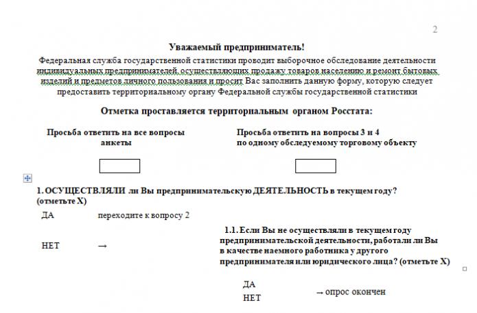 Форма 1-ИП (торговля), 2 стр., верхняя часть