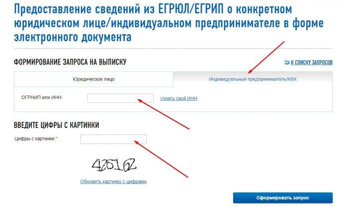 Порядок формирования онлайн-запроса на получение заверенной выписки из ЕГРИП через портал ФНС, шаг 3