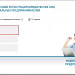 Онлайн-регистрация ИП на сайте ФНС, шаг 1