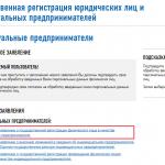 Онлайн-регистрация ИП на сайте ФНС, шаг 4