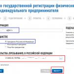 Онлайн-регистрация ИП на сайте ФНС, шаг 5