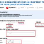 Онлайн-регистрация ИП на сайте ФНС, шаг 6