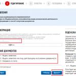 Онлайн-регистрация ИП на сайте ФНС, шаг 9