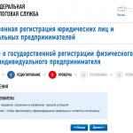 Онлайн-регистрация ИП на сайте ФНС, шаг 10