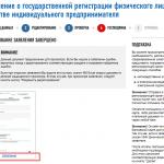 Онлайн-регистрация ИП на сайте ФНС, шаг 11