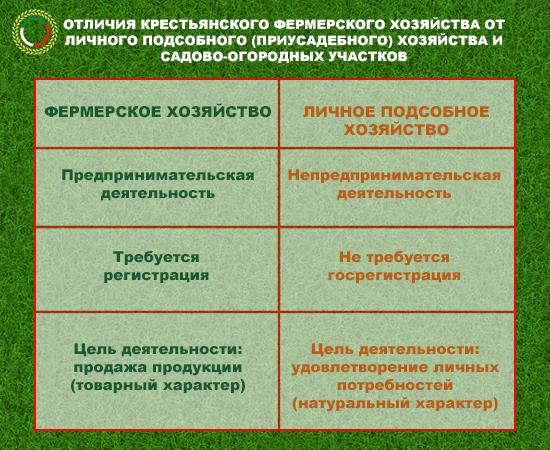 Таблица отличий КФХ от ЛПХ