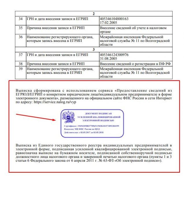 Скин выписки из ЕГРИП с электронной подписью