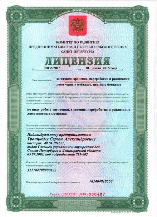Лицензия ИП