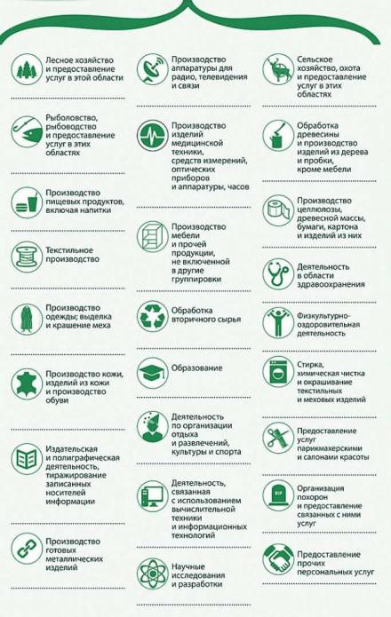 Сферы делятельности ИП на УСН, подпадающие по режим налоговых каникул в Башкортостане