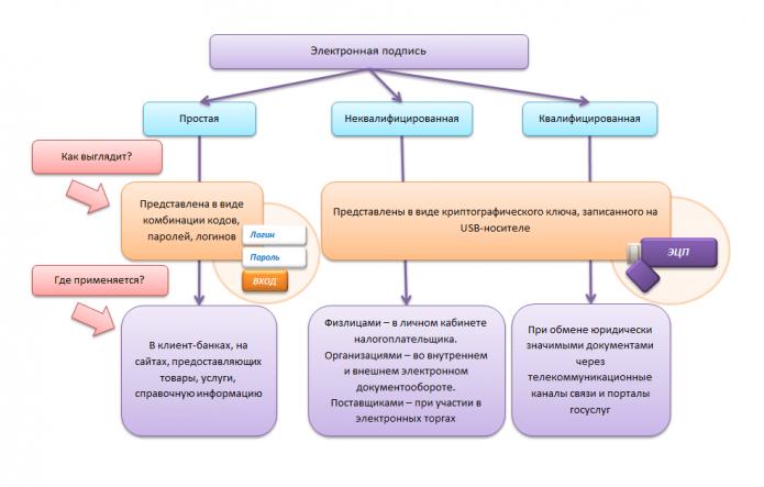 Схема: как представлены и для чего предназначены разные виды ЭЦП