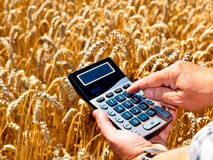 Руки с калькулятором на фоне поля